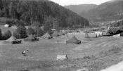 Zeltlager_1952_01