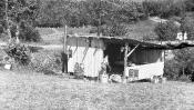 Zeltlager_1952_07
